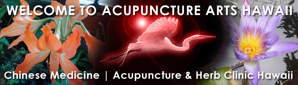 Acupuncture Arts Hawaii